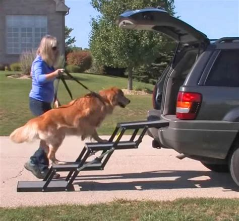 portable pet loader stairs  small  elderly