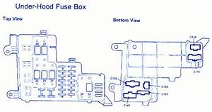 Honda Accord Lx 1988 Bottom View Fuse Box  Block Circuit Breaker Diagram