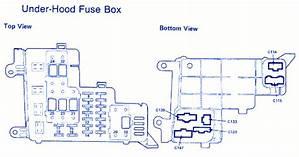 1994 Honda Accord Horn Wiring Diagram 41404 Antennablu It