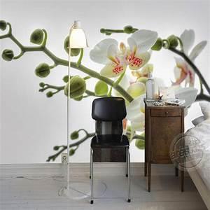 Popular Orchid Bark