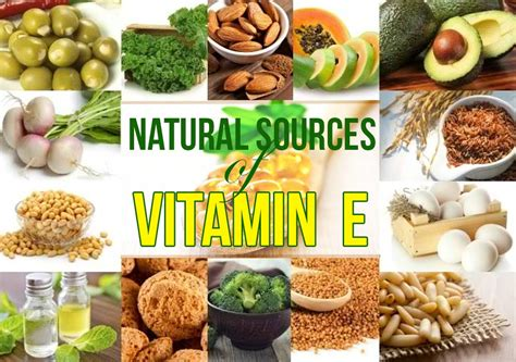 food sources of vitamin e pixshark com images