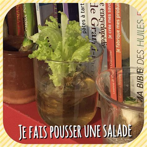 faire ma cuisine comment faire pousser une salade dans de l 39 eau le corps
