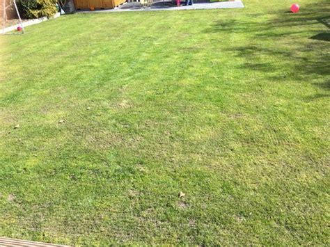 Rasen Nach Vertikutieren by Rasen Ohne Moos Durch Eisend 252 Nger Eisensulfat Gelingt
