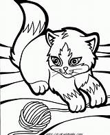 Coloring Pages Kitten Kittens Cats Printable Baby Cat Getcoloringpages sketch template