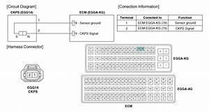 Hyundai Accent  Crankshaft Position Sensor  Ckps
