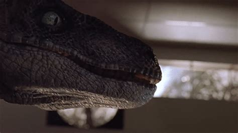 Jurassic Jungle Boat Ride Wiki by Velociraptors Gifs Find On Giphy