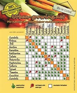 Gemüse Pflanzen Was Passt Zusammen : pflanzplan gem se richtig anpflanzen welche gem se ~ Lizthompson.info Haus und Dekorationen