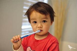 Tooth care for toddlers | Tiny Tots International School