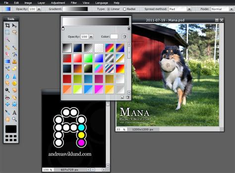 Review Pixlr Editor, The Free Online Photo Editor