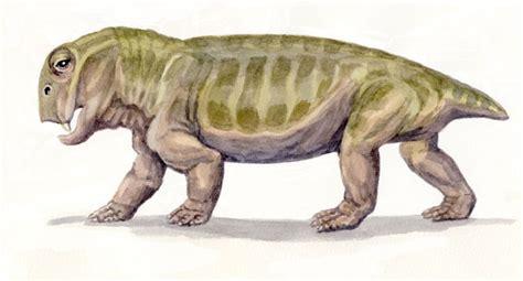 Lystrosaurus 2 By Willemsvdmerwe On Deviantart