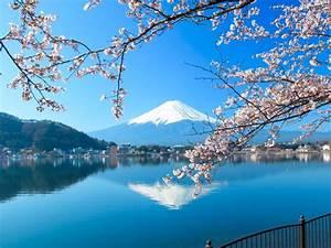 Japonia wakacje wycieczki z Ecco Travel