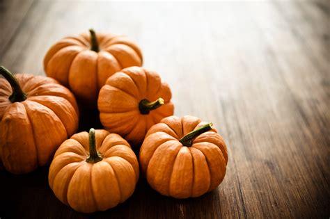 months beauty secret pumpkin candis