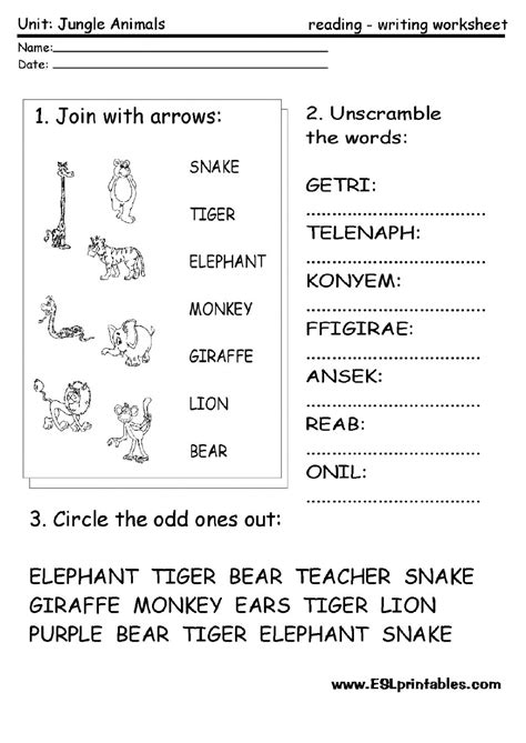 jungle animals worksheet worksheets esl english interactive