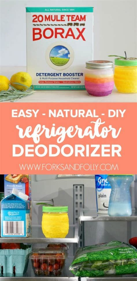 Easy & Natural DIY Refrigerator Deodorizers   Forks and Folly