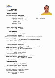 cv form in english download cv resume examples to download With cv english example
