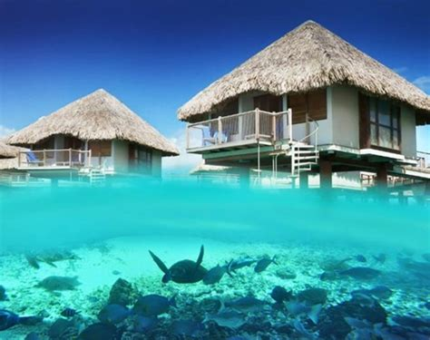 Bora Bora Hotels Over Water