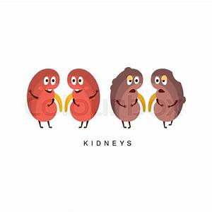 Healthy vs Unhealthy Kidneys Infographic Illustration ...