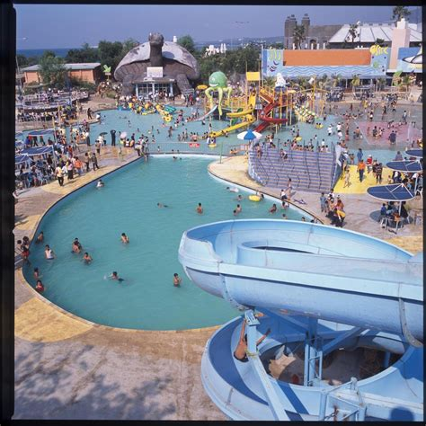theme park water park home