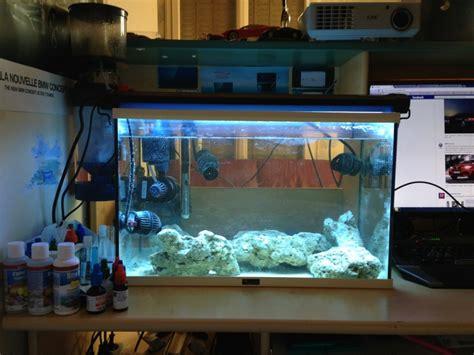aquarium eau douce en eau de mer