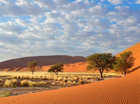 Sossusvlei Namib Naukluft National Park Namibia 1800x2880