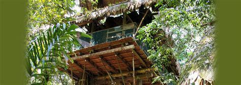 Camp Canopée  Escapade Carbet