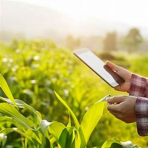 Nano Bio-sensors - Inevitable Technology For Indian Agriculture