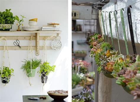 plante aromatique cuisine la fabrique à déco des plantes dans la cuisine plantes co cuisine déco et