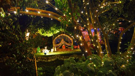 melbourne fresh daily christmas lights at the boulevard