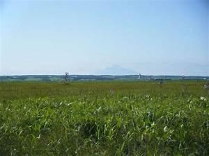 Sarobetsu plain - Wikipedia  Plain