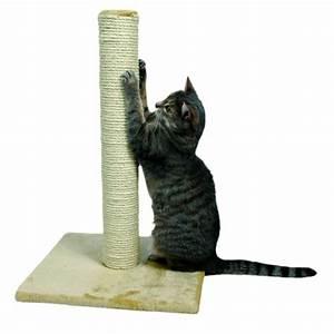 griffoir pour chat griffoir avec rouleau sisal With tapis rouge avec canape anti griffe de chat