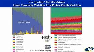 Measuring the Human Brain-Gut Microbiome-Immune System ...