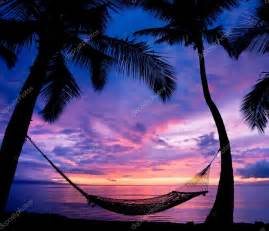 beautiful vacation sunset hammock silhouette with palm trees stock photo epicstockmedia