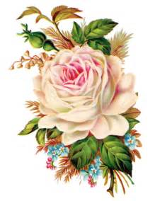clip art royalty  gorgeous vintage rose image