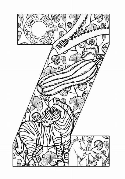 Coloring Alphabet Pages Adults Adult Letters Printable