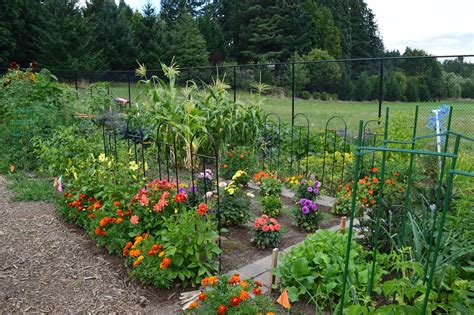 the of gardening community garden wilsonville parks and rec or official website