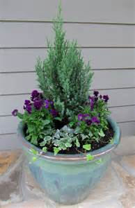 container plants ideas winter container gardens