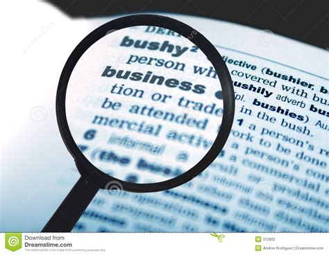Business Word In Dictionary Stock Photo