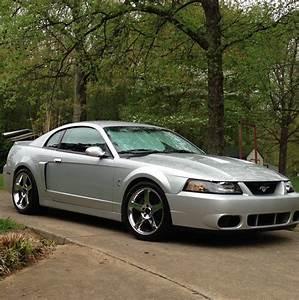2004 Ford Mustang Cobra | 2004 ford mustang, Ford mustang cobra, Mustang cobra