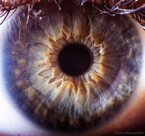 beautiful eyes amazing close    human