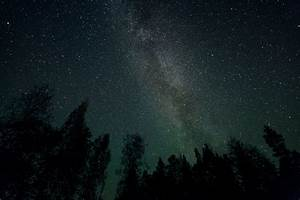Galaxy Stars Milky Way Night Trees space wallpaper ...
