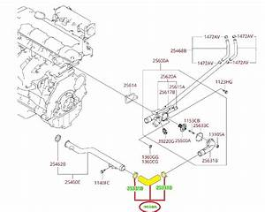 Genuine Kia Engine Coolant Water Inlet Hose Oem   25480