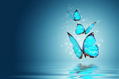 Blue Magical Wallpaper Hd by Mood Butterfly Magic Background Blue Wallpaper Widescreen
