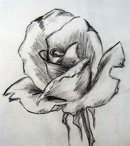 Easy Pencil Drawings of Flowers | Art By Prem (•) Com ...