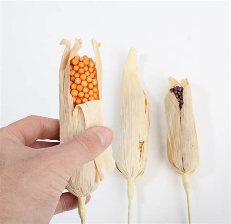 fall artificial indian corn fruits  vegetables