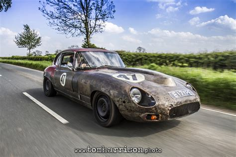 Monstrous E-Type is the Name of an English Cat with Rat ...