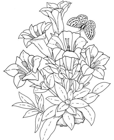 Realistic Flowers Coloring Pages Рисунки цветов Рисунки