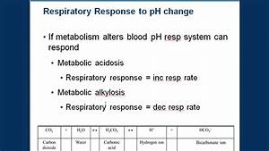 Respiration And Blood Ph