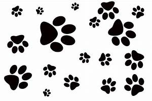Dog Footprint Free Stock Photo - Public Domain Pictures