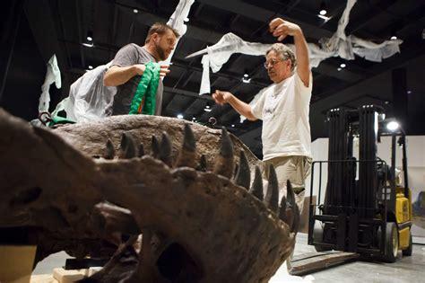 museum unveils million dinosaur hall beaumont enterprise
