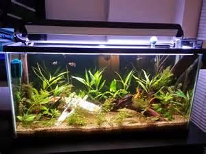 Star Wars Fish Tank Decor Fish Tank Decorations Star Wars